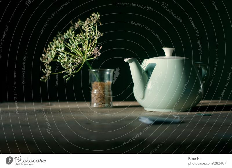HerbTea Hot drink Glass Teapot Healthy Herb tea Teabag Seed Fennel Wooden table Alternative medicine Sugar candy Colour photo Subdued colour Interior shot