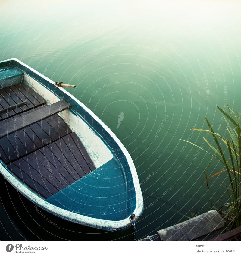Bread roll without R Summer Environment Nature Plant Elements Water Weather Beautiful weather Coast Lakeside Fishing boat Rowboat Watercraft Lie Green