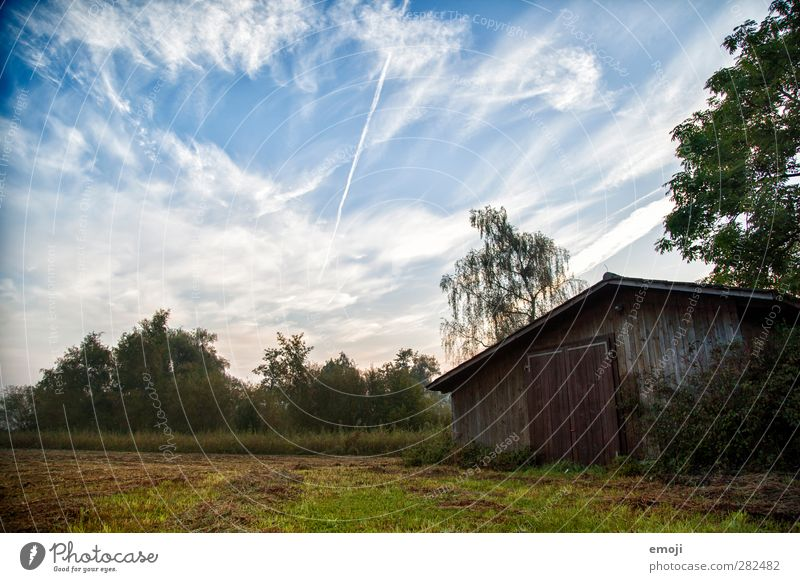 on the lakeshore Environment Nature Sky Clouds Autumn Meadow Field Natural Blue Green Hut Colour photo Exterior shot Deserted Morning Dawn Day Shadow