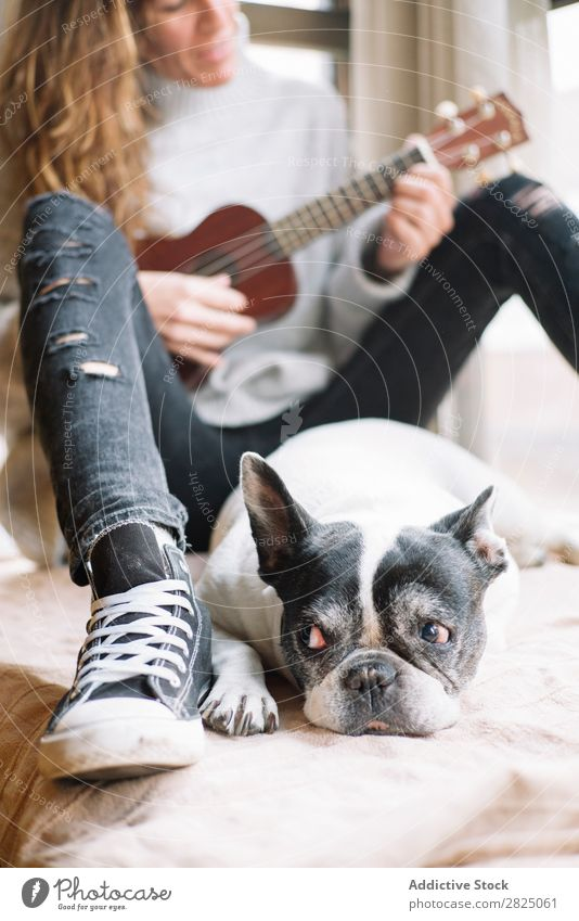 Woman and dog relaxing at home Home Relaxation Lifestyle Ukulele Guitar Musician Dog Pet Friendship Lie (Untruth) Beautiful Room Human being Easygoing Adults