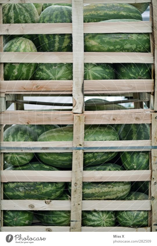 Green Healthy Fruit Food Large Fresh Nutrition Sweet Many Round Delicious Harvest Organic produce Crate Sell Juicy