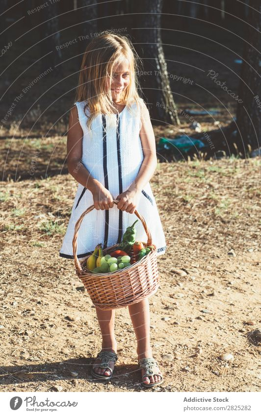 Anonymous child with basket of fruit Girl Basket Fruit Vegetable Summer Agriculture Landscape Nature Harvest vitamins Fresh Food Organic Beauty Photography