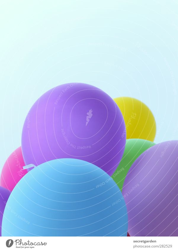 Happy birthday! Cloudless sky Summer Balloon Round Blue Violet Joy Party mood Multicoloured Exterior shot Copy Space top