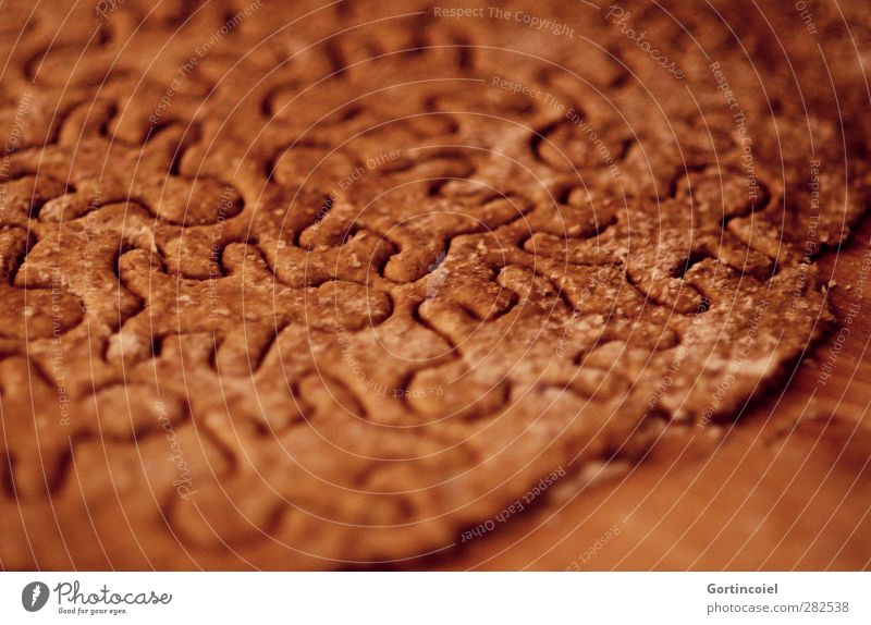 little man Food Dough Baked goods Candy Nutrition Feasts & Celebrations Brown Christmas biscuit Gingerbread Cookie Winter Colour photo Close-up