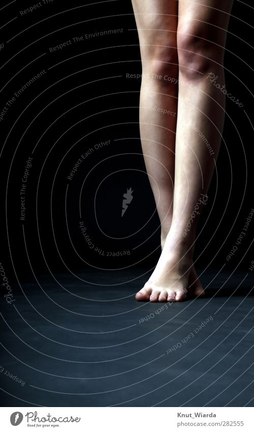 legs Human being Feminine Legs Feet 1 18 - 30 years Youth (Young adults) Adults Dancer Thin Black Colour photo Studio shot Flash photo Central perspective