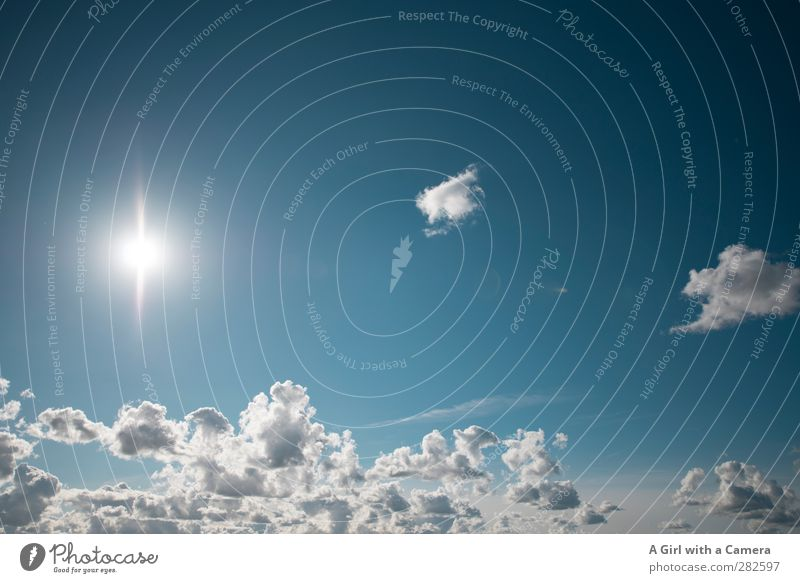 Star in the sky Environment Nature Sky Clouds Summer Beautiful weather Illuminate Fresh Bright Blue White Far-off places Above Star (Symbol) Colour photo