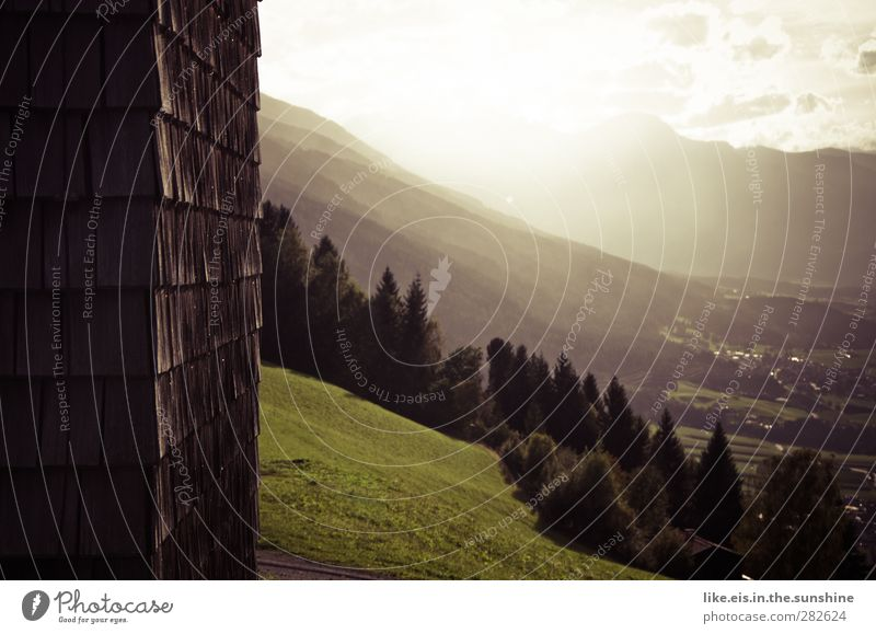 Nature Summer Loneliness Calm Landscape Relaxation Forest Environment Far-off places Meadow Mountain Wall (building) Autumn Grass Wood Garden