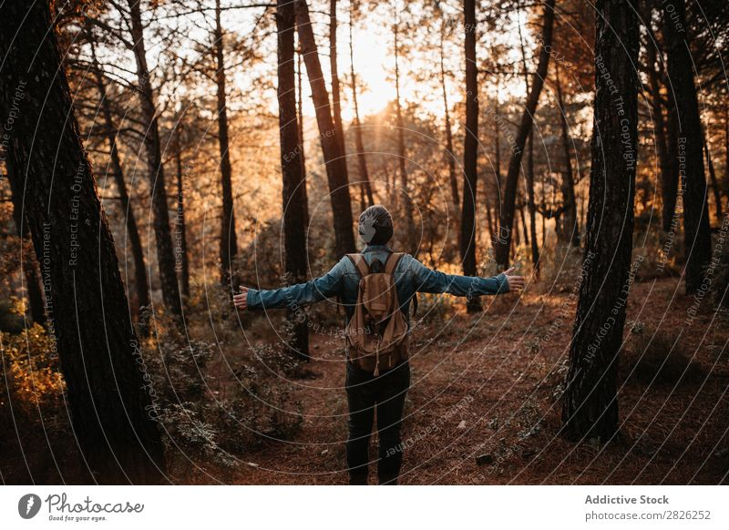 A person in the autumn woods Tourist Forest Backpack Autumn Tourism Vacation & Travel Adventure Youth (Young adults) Trip backpacker traveler Wide Hand Rural