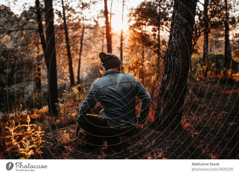 Man having peaceful time in the forest at sunset Human being Rest Sit Tourist Forest Looking Sunset Tree Portrait photograph Autumn Youth (Young adults) Rural