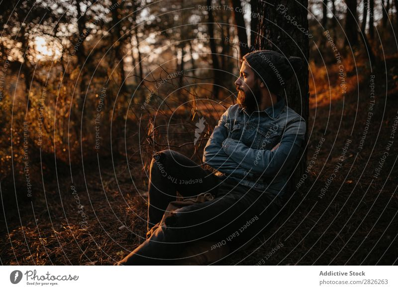 Man in forest admiring sunset Human being Rest Sit Tourist Forest Looking Sunset Tree Portrait photograph Autumn Youth (Young adults) Rural Nature Relaxation