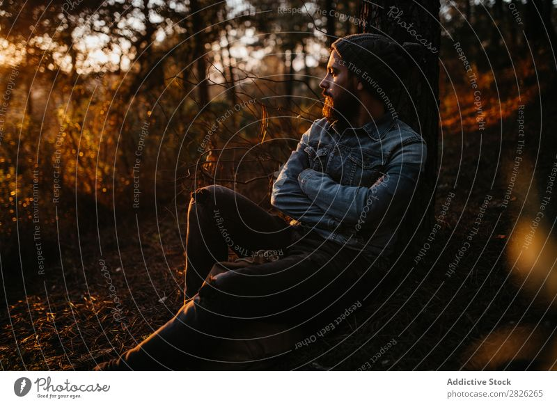 Bearded man having a break in the forest Human being Rest Lie (Untruth) Man Tourist Backpack Forest Looking Sunset Tree Portrait photograph Autumn Tourism