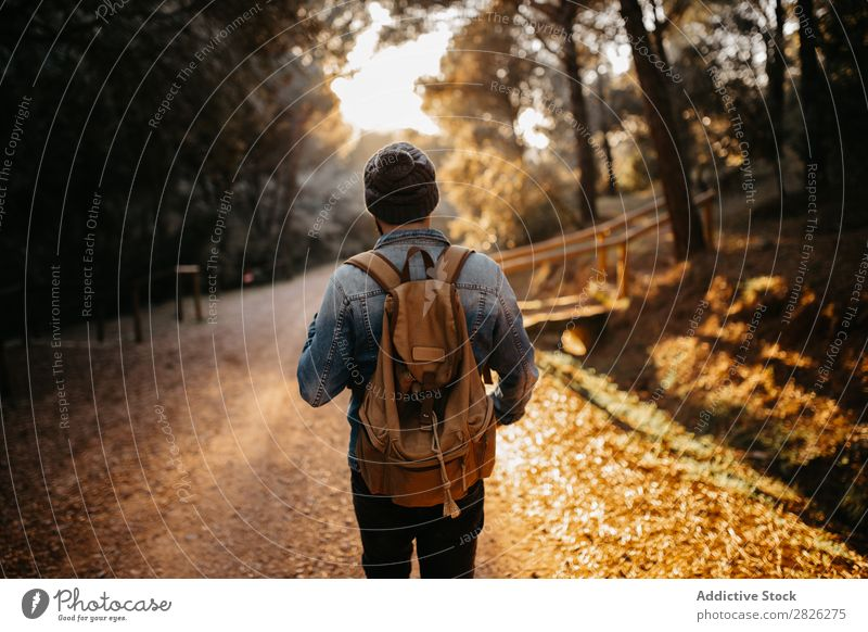 A tourist on rural road Man Tourist Street Forest Backpack Autumn Tourism Vacation & Travel Adventure Youth (Young adults) Trip backpacker traveler Rural Nature