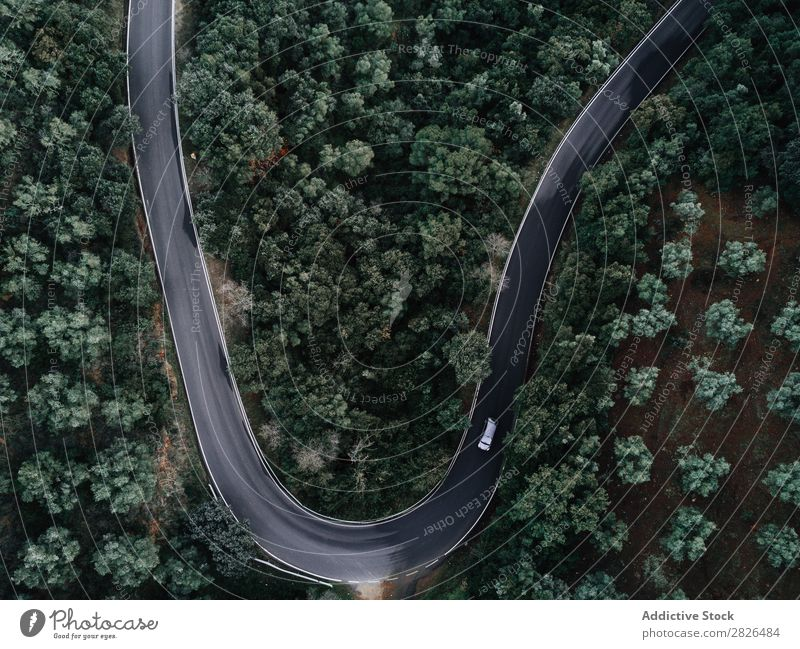 Aerial view of a road crossing a forest Aircraft Aerial photograph airborne Alpine Autumn Autumnal Beautiful bird eye coniferous Day Drone Ecological ecosystem