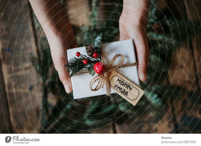 Top view of hands holding Christmas present Woman Human being Christmas & Advent Hand Joy Winter Lifestyle Adults Love Feasts & Celebrations Style Together