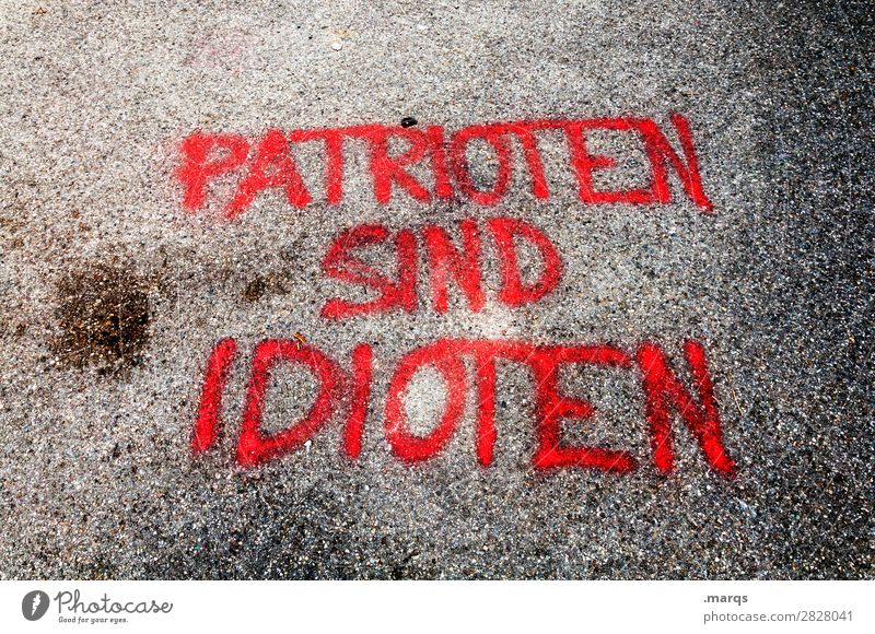 Patriots are idiots. Dye Stone Characters Graffiti Trashy Politics and state Patriotism Doofus Colour photo Exterior shot Deserted Day Bird's-eye view