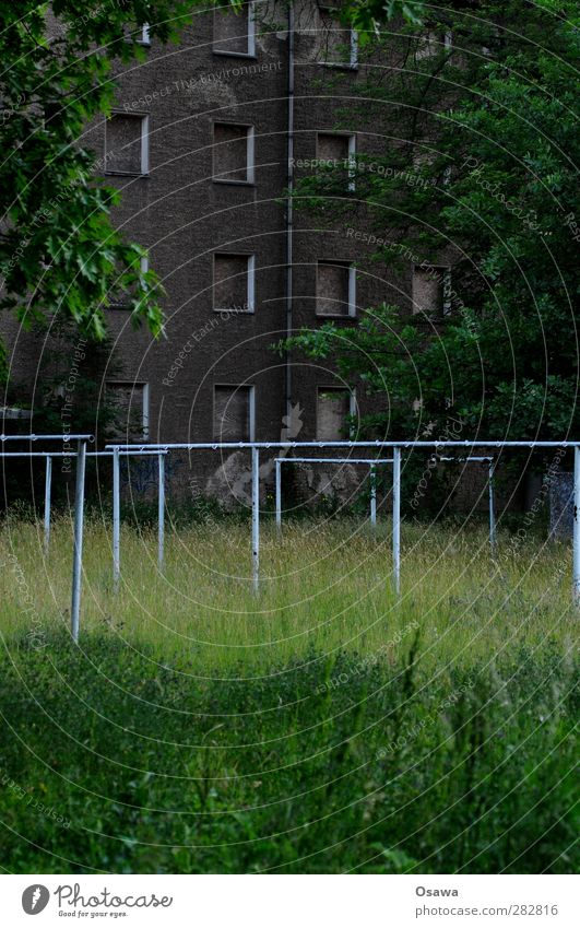 Green City Tree House (Residential Structure) Window Dark Death Grass Architecture Gray Sadness Building Facade Gloomy Village Manmade structures