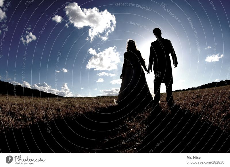 together Wedding Masculine Feminine Couple 2 Human being Environment Nature Landscape Sky Clouds Beautiful weather Meadow Field Dress Suit Together Love
