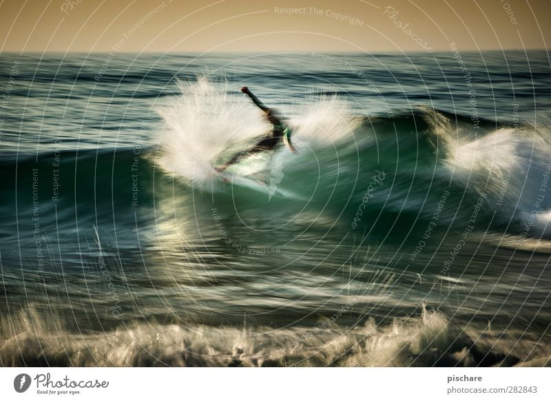 Water Summer Ocean Sports Exceptional Waves Leisure and hobbies Elements Cool (slang) Athletic Passion Surfing Aquatics