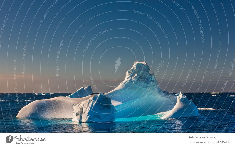 Antarctica Wild Nature Landscape Ice Cold Ocean South Iceberg Snow warming wildlife polar Climate Bird Penguin Colony Exterior shot White Bay Vacation & Travel