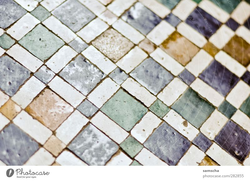 tiles Flat (apartment) Interior design Bathroom Wall (barrier) Wall (building) Ornament Colour Floor covering Ground Paving tiles Cultivation Tile Multicoloured