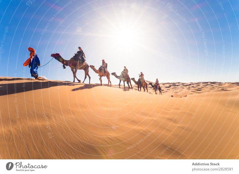 Camelcade at desert Desert Caravan Vacation & Travel Sand Dune Infinity Horizon