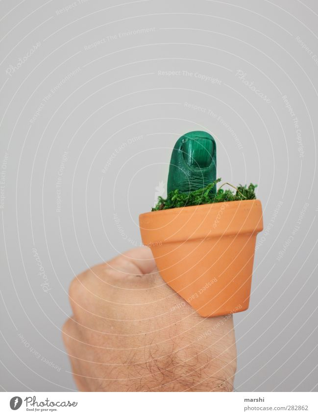 the green thumb Human being Masculine Fingers Nature Plant Flower Green Thumb Flowerpot Gardener Market garden Green thumb Gardening Presentation Fist