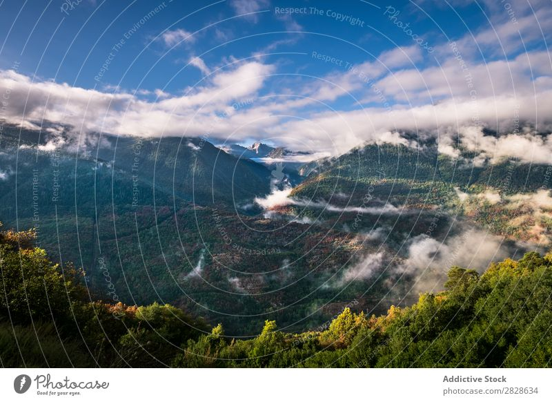 Picturesque view to cloudy hills Hill Vantage point Clouds Landscape Destination Nature Beautiful scenery Natural Trip Landmark Forest Mountain Green