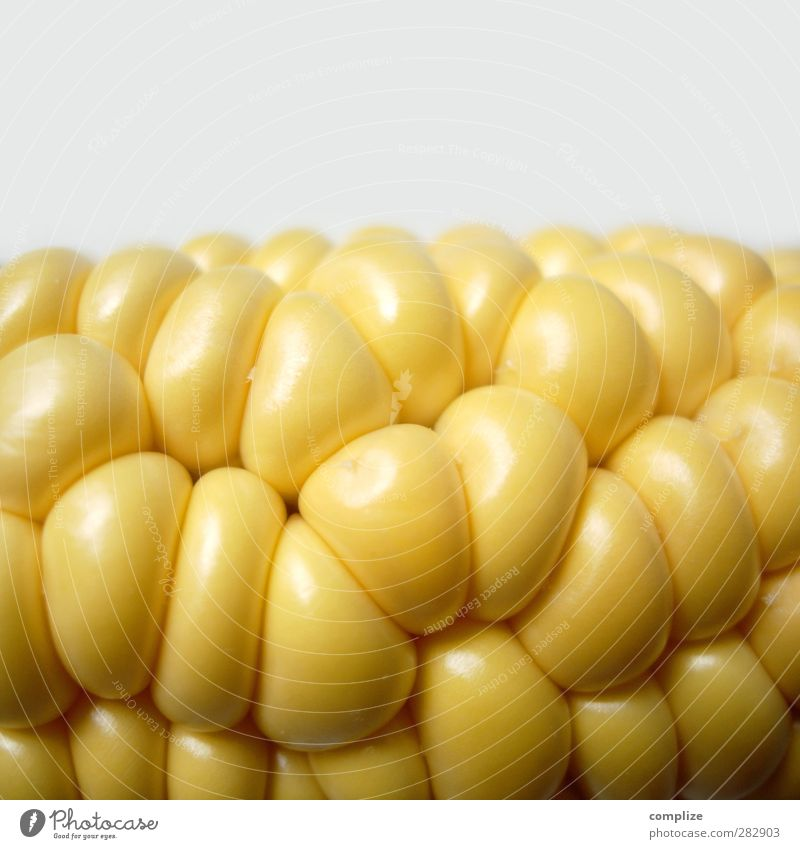 The corn or the corn? Food Vegetable Lettuce Salad Fruit Nutrition Eating Lunch Dinner Buffet Brunch Banquet Picnic Organic produce Vegetarian diet Diet Fasting