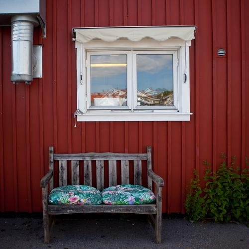 Vacation & Travel Red House (Residential Structure) Relaxation Window Dream Sit Living or residing Village Hut Sweden Town Fishing village