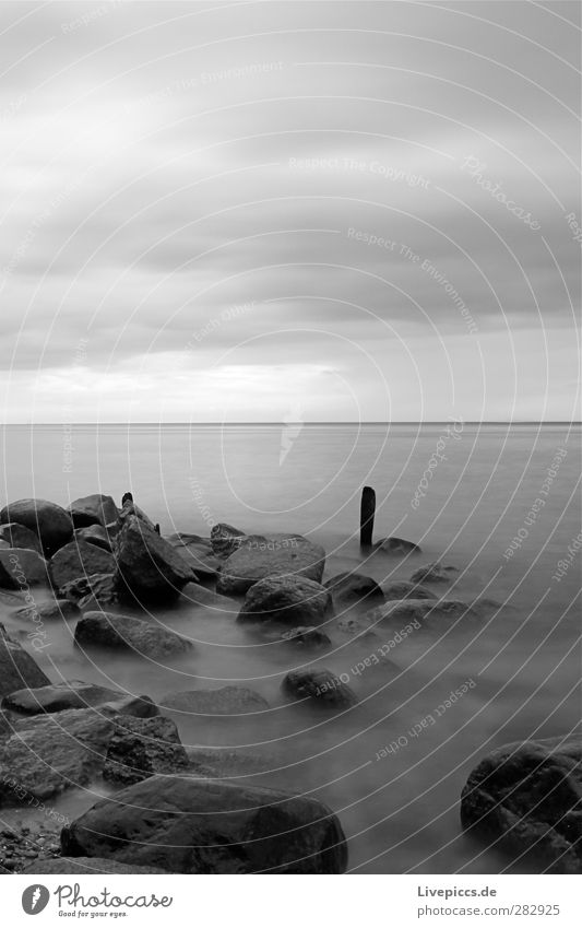 da Pfal Environment Nature Landscape Water Sky Clouds Weather Bad weather Coast Beach Baltic Sea Ocean Stone Wood Gray Black White Black & white photo