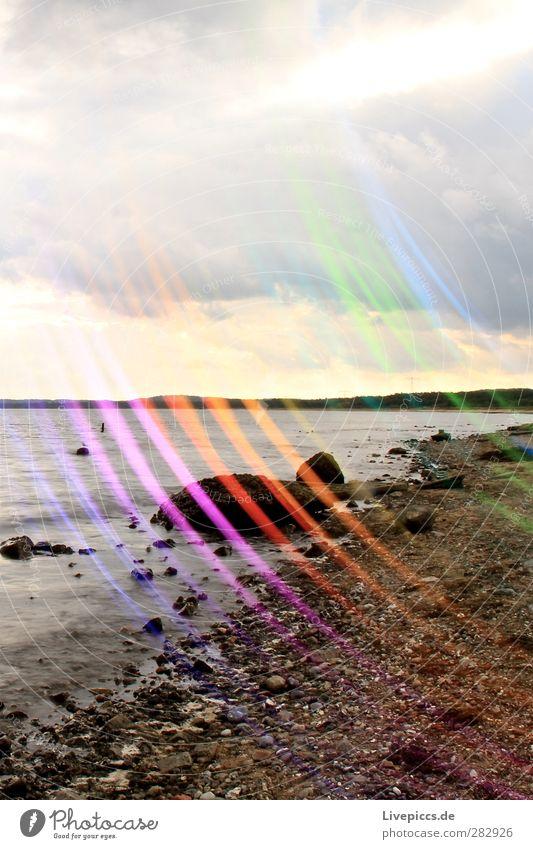 colourful coastline Painter Environment Nature Landscape Water Clouds Sunlight Plant Tree Coast Beach Baltic Sea Ocean Stone Illuminate Multicoloured