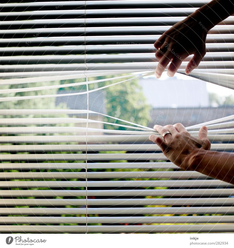 Get out of here! Living or residing Hand 1 Human being Garden Window Venetian blinds Slat blinds Disk Line Stripe To hold on Emotions Moody Curiosity Reluctance