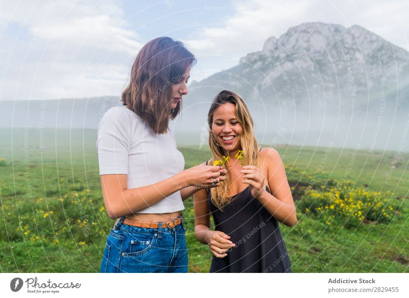 Smiling girls with field flowers Woman Meadow Flower Field picking Happy Laughter Together Friendship Relaxation Mountain Nature Girl Grass Beautiful