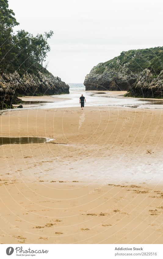 Person walking in sandy bay Human being Bay Beach Calm Summer Tropical Remote Vantage point