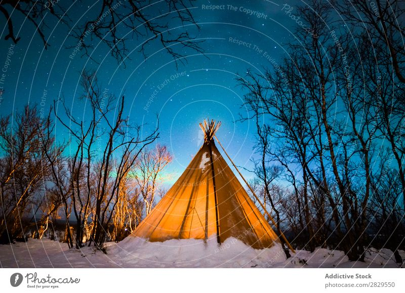 Tent in winter forest Winter Nature Cold North Covered Light Night Forest Snow Seasons White Landscape Ice Frost Vacation & Travel Mountain Beautiful Weather