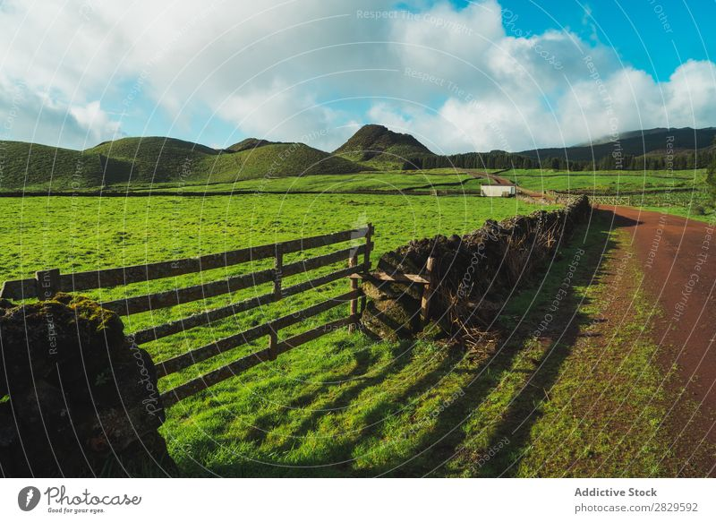 Green field and hills Field Nature Meadow Spring Fence Wood Summer Grass Landscape Agriculture Rural Sunlight Farm Beautiful Lawn Environment Natural Seasons