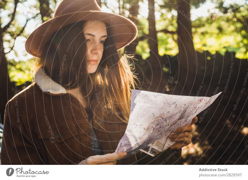Young woman with map on forest Woman Tourist Forest Green Nature Environment Map Reading