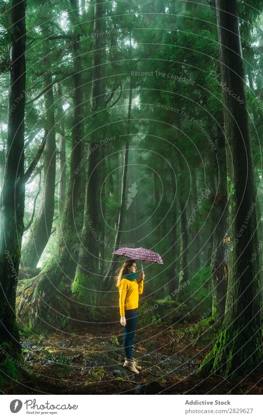 Woman with umbrella in windy forest Forest Green Umbrella Wind Walking Vacation & Travel