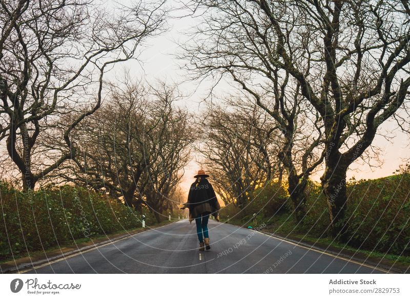 Woman strolling on empty winter road Winter Alley Tree Seasons romantic Cold Bare Nature tranquil Street Park Walking Loneliness Empty Style paved Weather