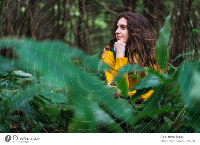Pensive woman in forest Woman Forest Green Dream Considerate Vacation & Travel