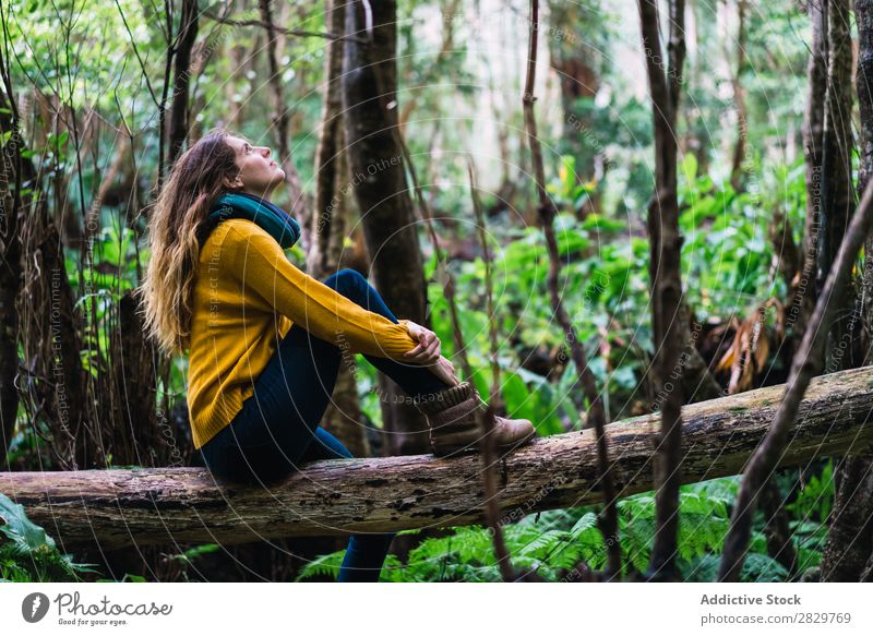 Woman sitting on trunk in woods Forest Dream Considerate Trunk Sit Looking up Green