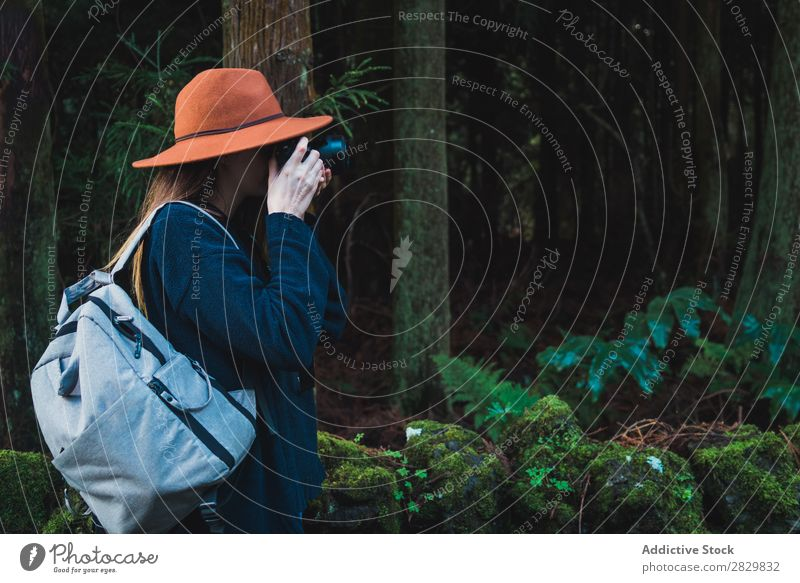 Woman taking shots in forest Tourist Forest Green Nature Photographer Camera Backpack