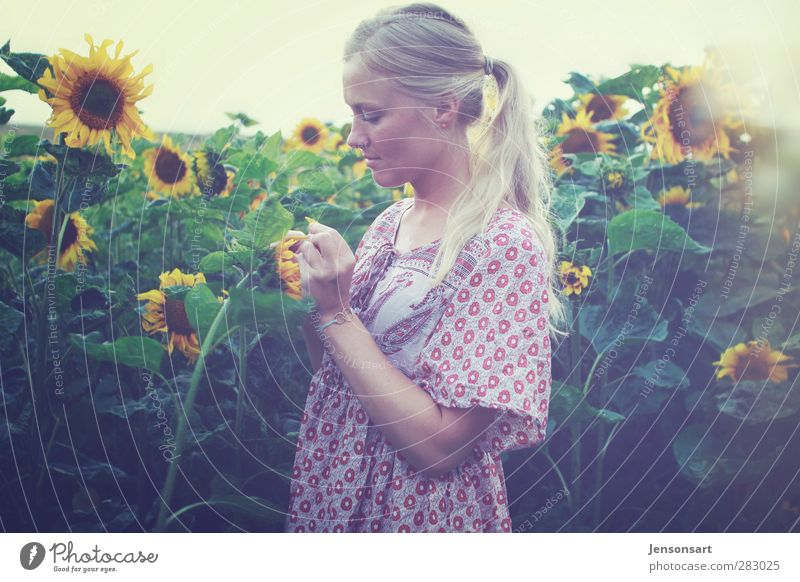 Blond girl on a flower meadow Human being Feminine Young woman Youth (Young adults) Life 1 18 - 30 years Adults Nature Summer Flower Blonde Braids Bouquet