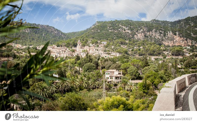 Valldemossa Vacation & Travel Tourism Trip Adventure Far-off places Freedom Summer Summer vacation Mountain Hiking Nature Landscape Beautiful weather Tree