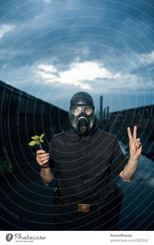 Peace man respirator clouds autumn military plant Human being Masculine Man Adults Nature Sky Cloudless sky Clouds Summer Autumn Bad weather Storm Plant