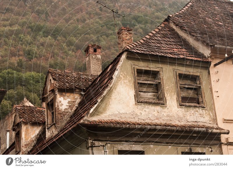 back in... Romania Europe Eastern Europe Siebenbürgen Town Old town Deserted House (Residential Structure) Manmade structures Building Architecture Window Roof
