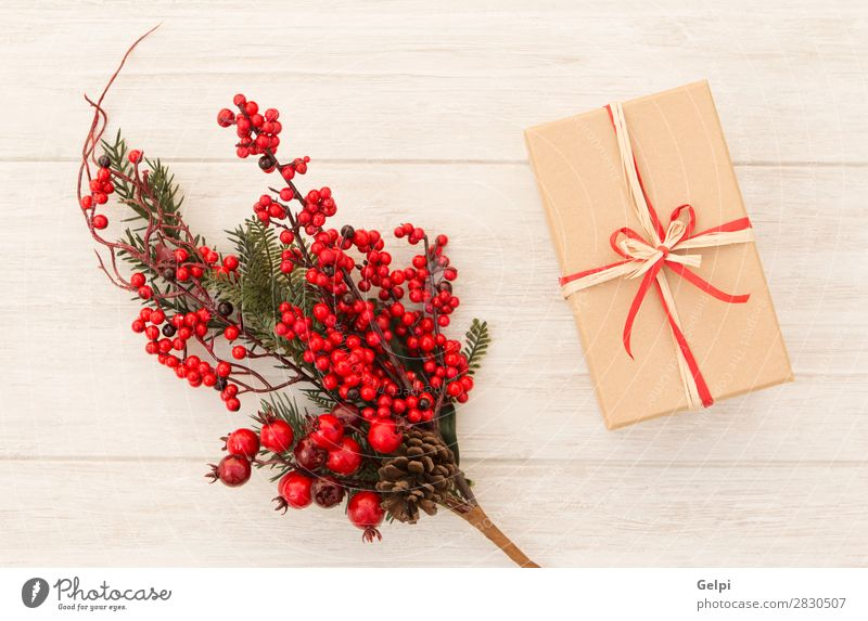 Christmas gift with a nice red Christmas ornament Nature Christmas & Advent Plant Colour Green White Red Tree Leaf Winter Wood Feasts & Celebrations Copy Space