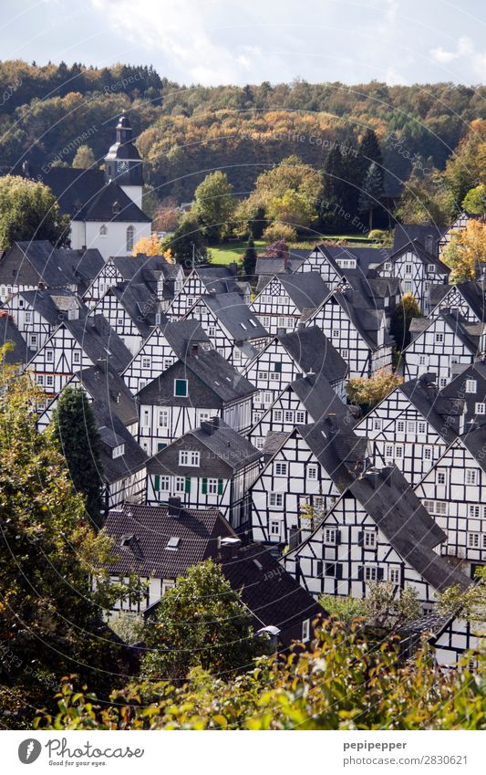 Freudenberg Vacation & Travel Tourism Living or residing Flat (apartment) House (Residential Structure) Beautiful weather Tree Forest Hill freudenberg Germany