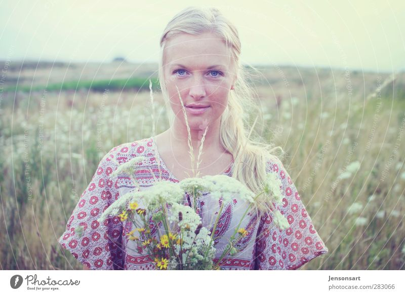 Blond girl on a flower meadow Human being Feminine Young woman Youth (Young adults) 1 18 - 30 years Adults Landscape Summer Flower Populated Blonde Braids