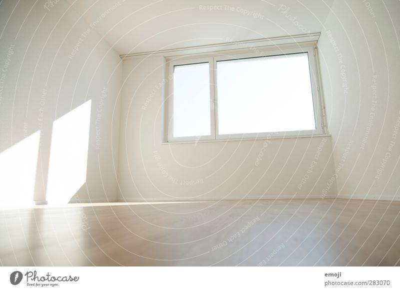 Window Wall (building) Wall (barrier) Bright Flat (apartment) Empty Floor covering Ground Friendliness Laminate